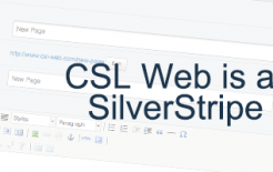 silverstripe blog short