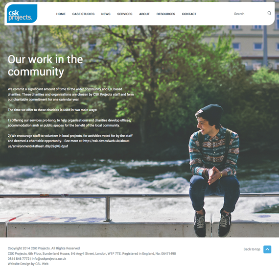 cskprojects web design 3